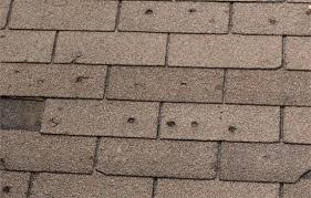 Shingles Hail Damage